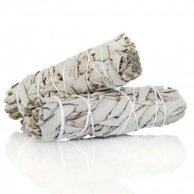 Tocha de Sálvia Branca Pequena - 12 cm - Pack de 5 unidades